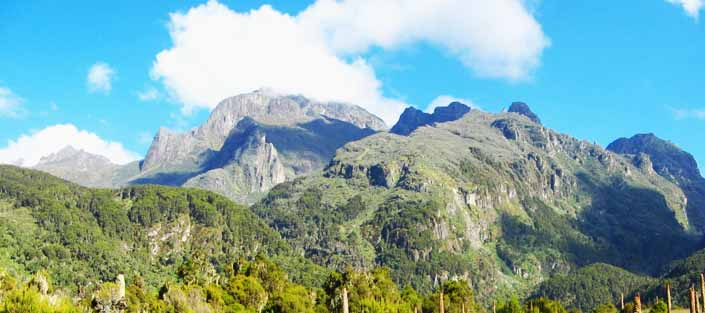 Image result for mt rwenzori